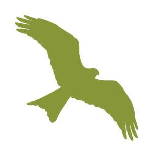 Hawk Conservancy Trust logo